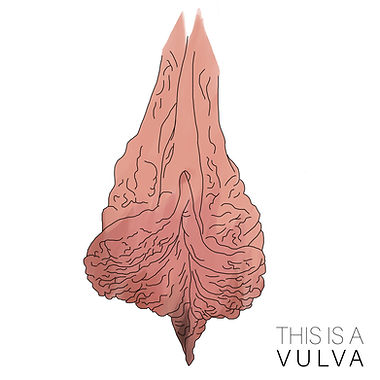 Wrinkly vulva.jpg