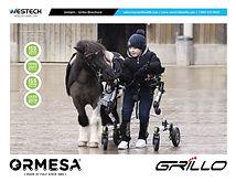 Grillo-2020-Aug-Brochure-Cover.jpg