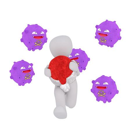 החיידקים הפרוביוטיים - החיילים שמשרתים בתוך גופינו