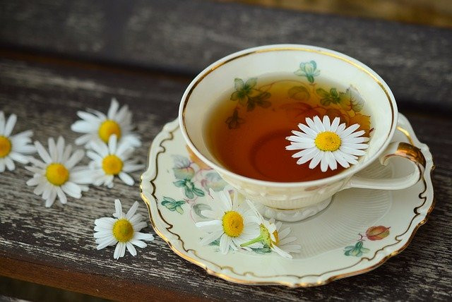 חליטות תה לטיפול בדלקות שתן