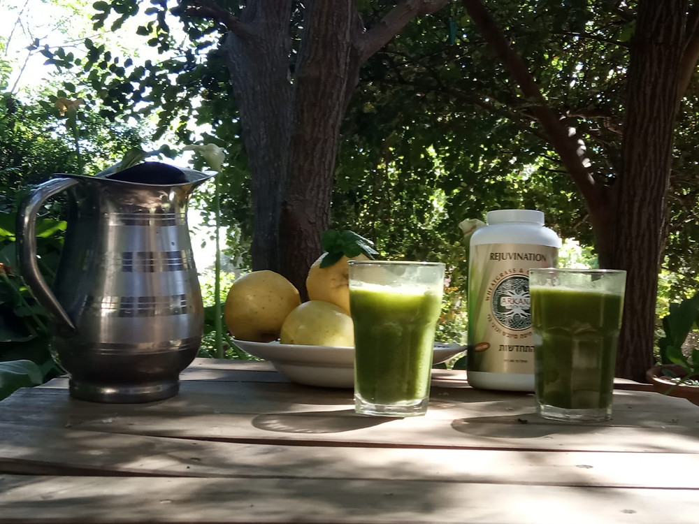 מיץ תפוחים ועשב חיטה של ארקנה