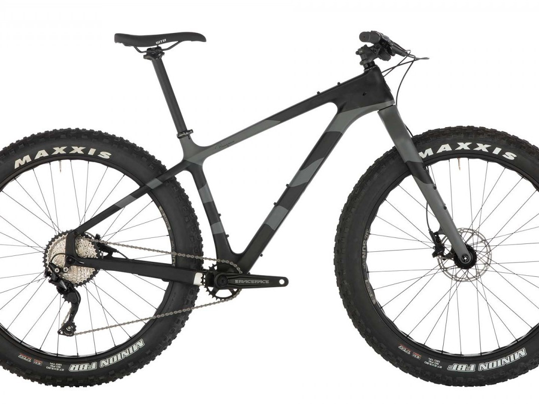 2019 Salsa Beargrease Deore 1X