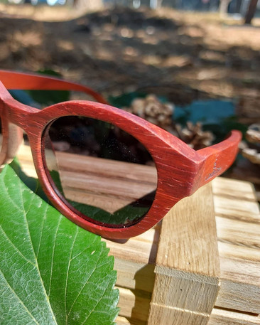 Red wooden sunglasses by Wood On Time .jpg