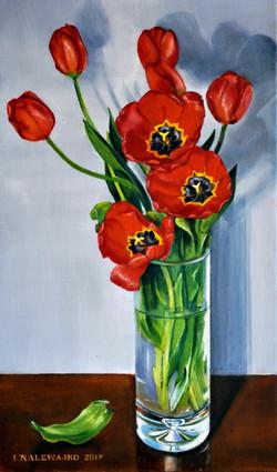 """""""Tulipany czerwone"""""""