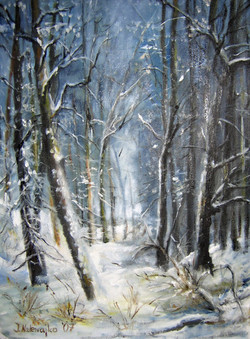 """Zima w lesie"""