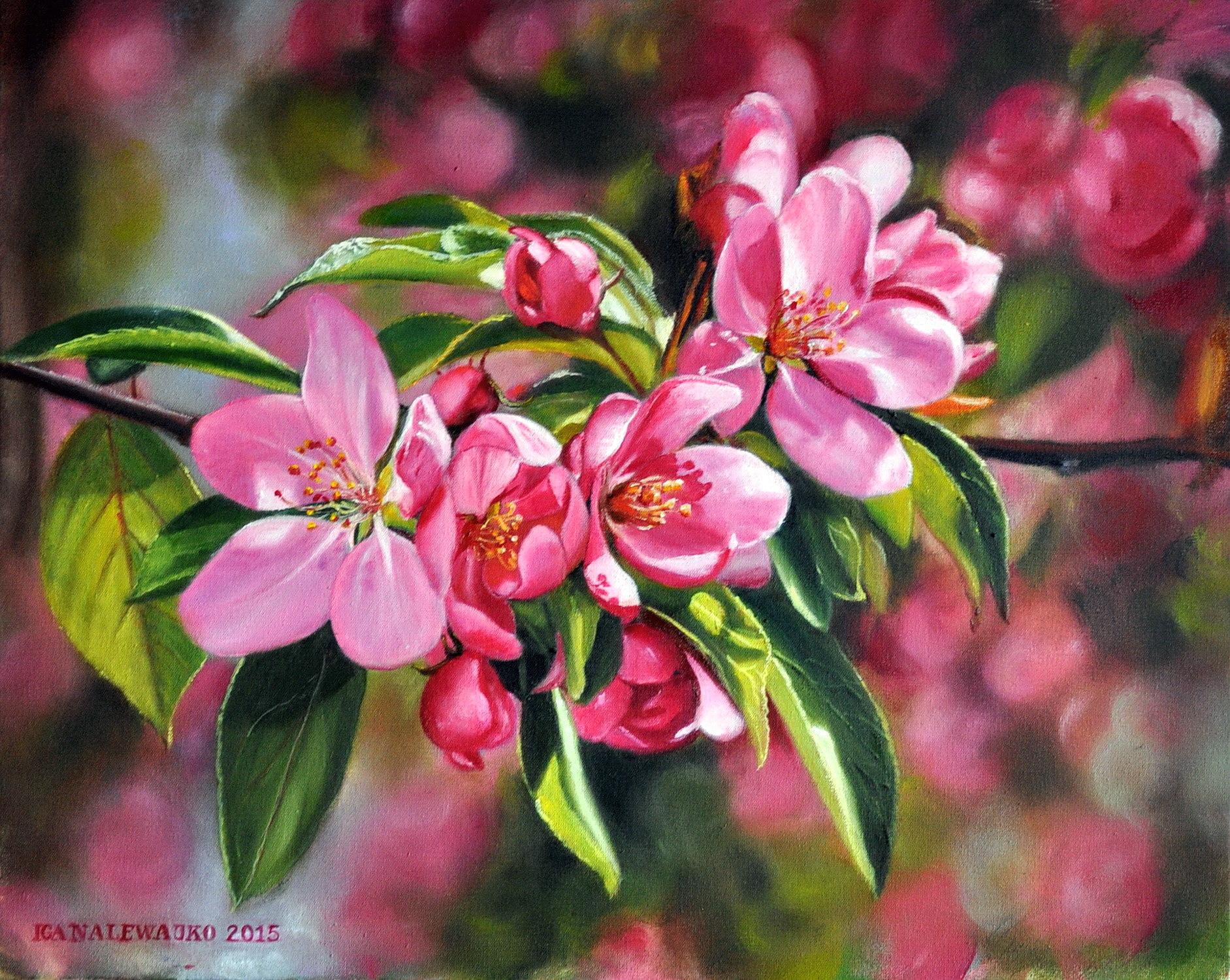 """Kwitnąca rajska jabłoń"""
