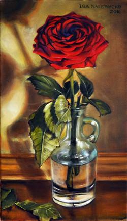 """""""Wieczorna róza"""""""