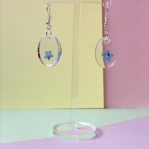 Delicate forget-me-not dangles
