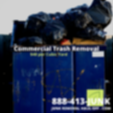 Junk Removal, Waste Removal services,