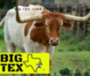 Saginaw TX Junk Removal Service