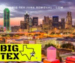 Big Tex Junk Removal, Junk Removal Service,
