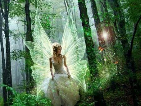 Unicorns, faeries and the prince