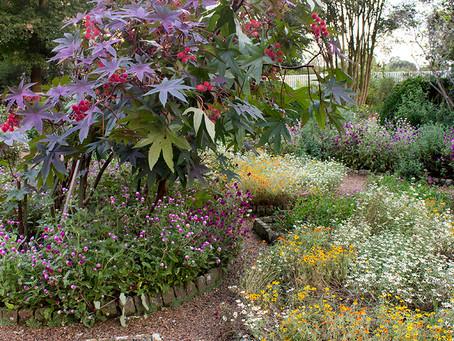 Garden Photography: Rachel's Garden at The Hermitage