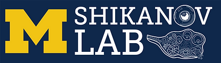 Shikanov Lab sticker logo.png