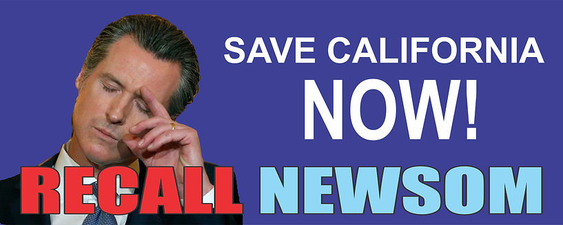 Recall Newsom banner.jpg