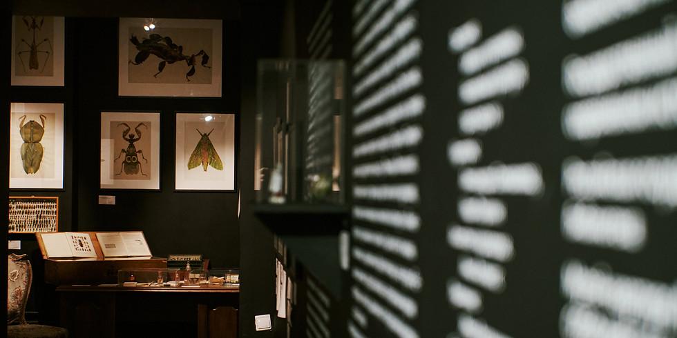 Кураторская экскурсия по выставке «Жуки и гусеницы. Насекомая культура 1920 – 1940-х»