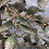 Thumbnail: Metal Leaf Tree with Patina Finish