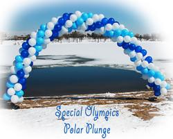 Polar Plunge Arch