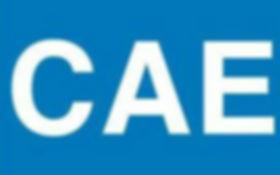 Подготовка к сдаче CAE