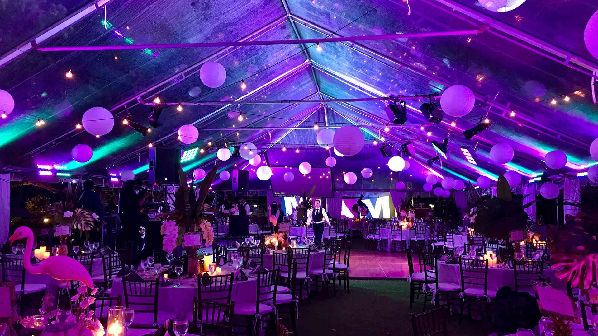 030 Marquee Lighting Hire.jpg