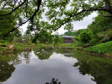 Tokyo resumed its economic activities