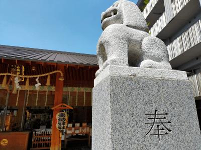 神楽坂赤城神社.png