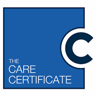 Care Certifcate e - learning