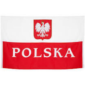 Polish Speaking Introduction to Health & Safety e - learning
