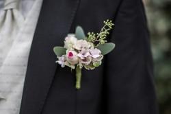 Bräutigam Steckblume