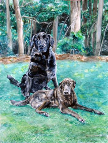 """18"""" x 24"""" Watercolor. 2011"""