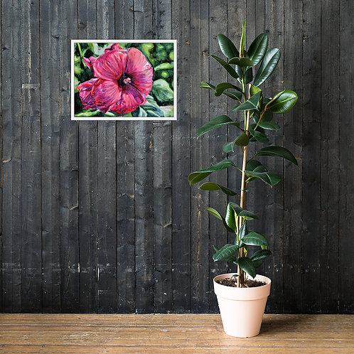 Hibiscus: Framed poster