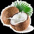 кокос.png