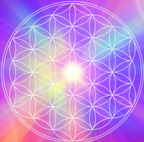 flower-_life_multicolor_square.png