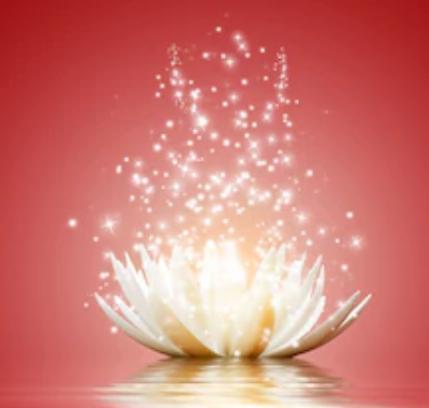 red_square_lotus.png