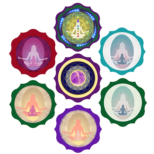 Premier Collection - All 7 Transformative Meditations
