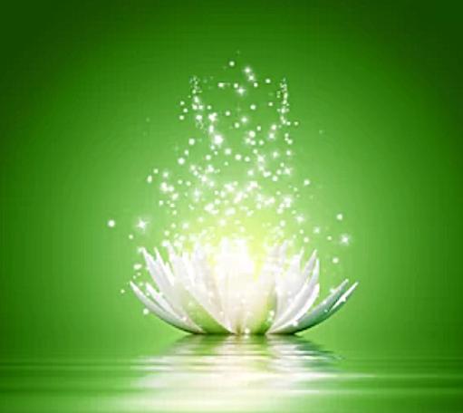green_lotus_square.png