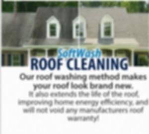 roofcleaning_edited.jpg
