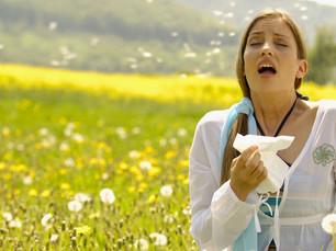 花粉症(検査)