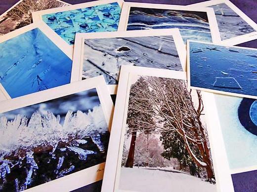 winter assortment