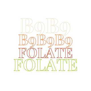 Folate_ Images 1 x1.png