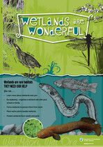 Wetland Poster 1 offset low res.jpg