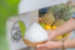 業務用かき氷機スノーミィでさらさらふわふかき氷レシピ開発