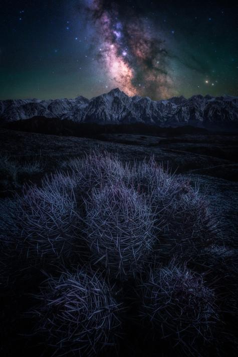 Mountain Meets Desert