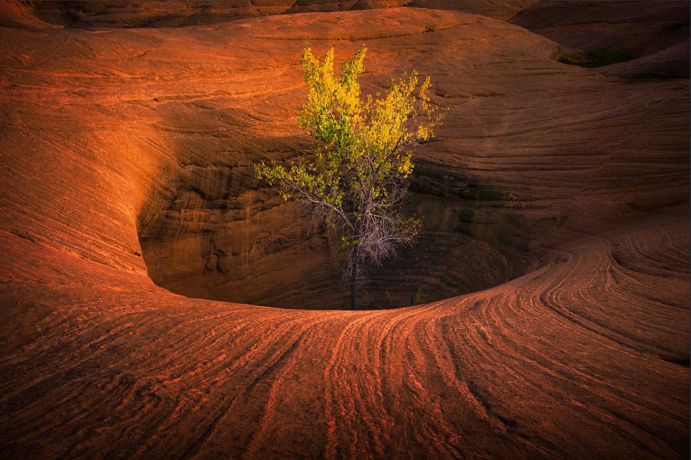 landscape photography vignette