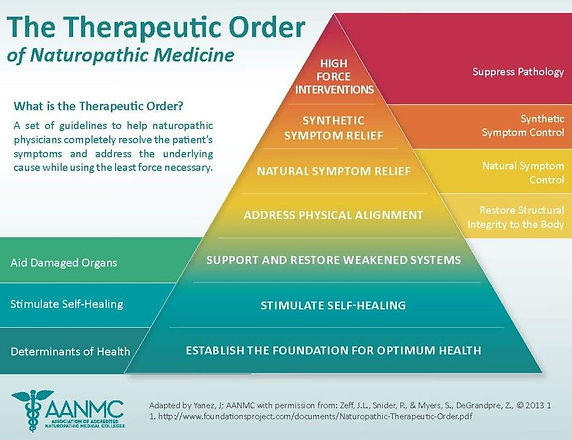 Therapeutic-Order-postcard_Page_1-1024x7