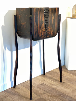 cabinet Ecaille 1
