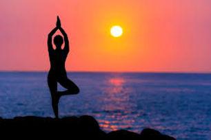 Yoga tree sunset.jpg