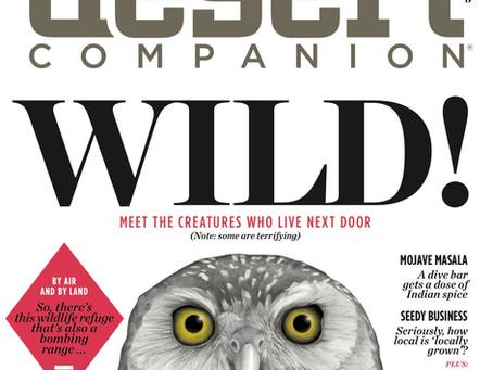 Desert Companion Magazine cover
