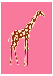 Giraffe, Sara Ottavia Carolei