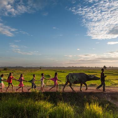 Rural Development Sector Performance Report 2014